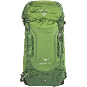 Osprey Kestrel 28 Backpack Men green